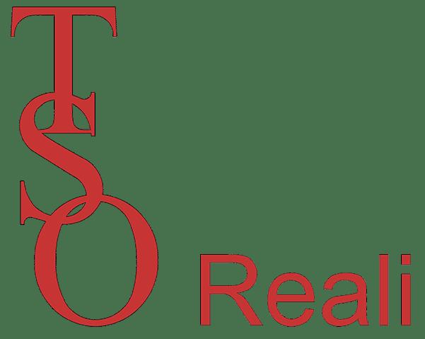 TSO réali métallerie et serrurerie
